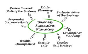 Graphic of Business Succession Planning