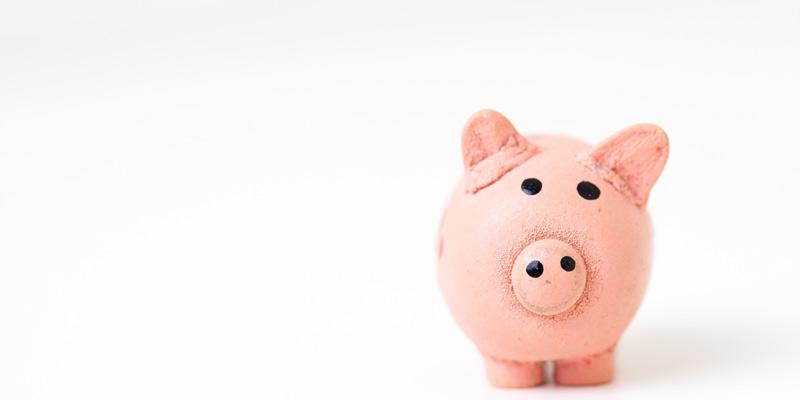 pink piggie bank on white background